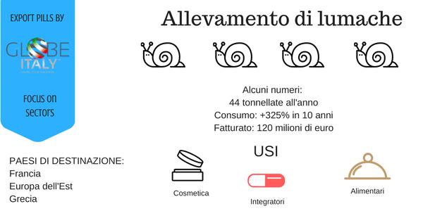 Alcuni dati sull'allevamento di lumache in Italia